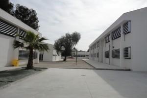 I.E.S.-Juan-de-Aréjula-2