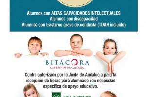 Bitacora - Becas