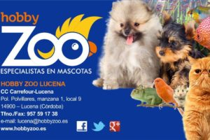 Hobby-Zoo-Lucena