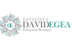 1477415434_Estilista_David_Egea_Logo-250x165 Estilista David Egea